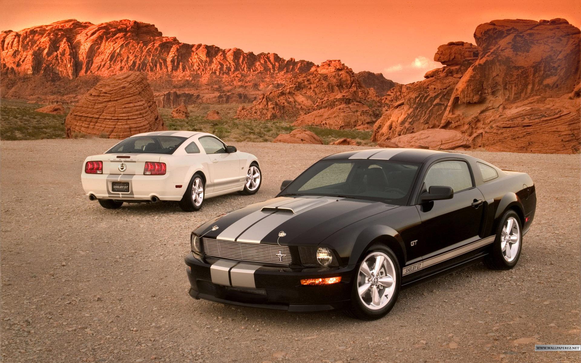Mustang DUB Edition